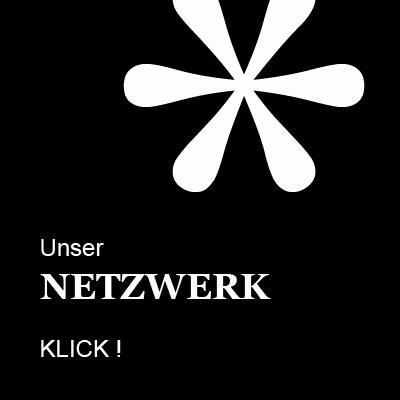 Icon netzwerk 400